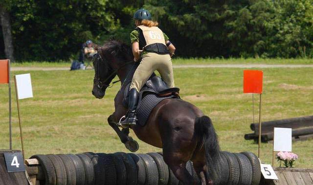 Equestrian Helmet